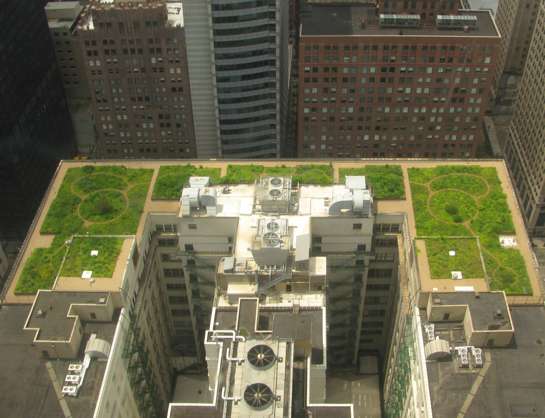 Estetyczne, zielone dachy