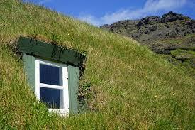Wyjątkowe systemy dachów zielonych