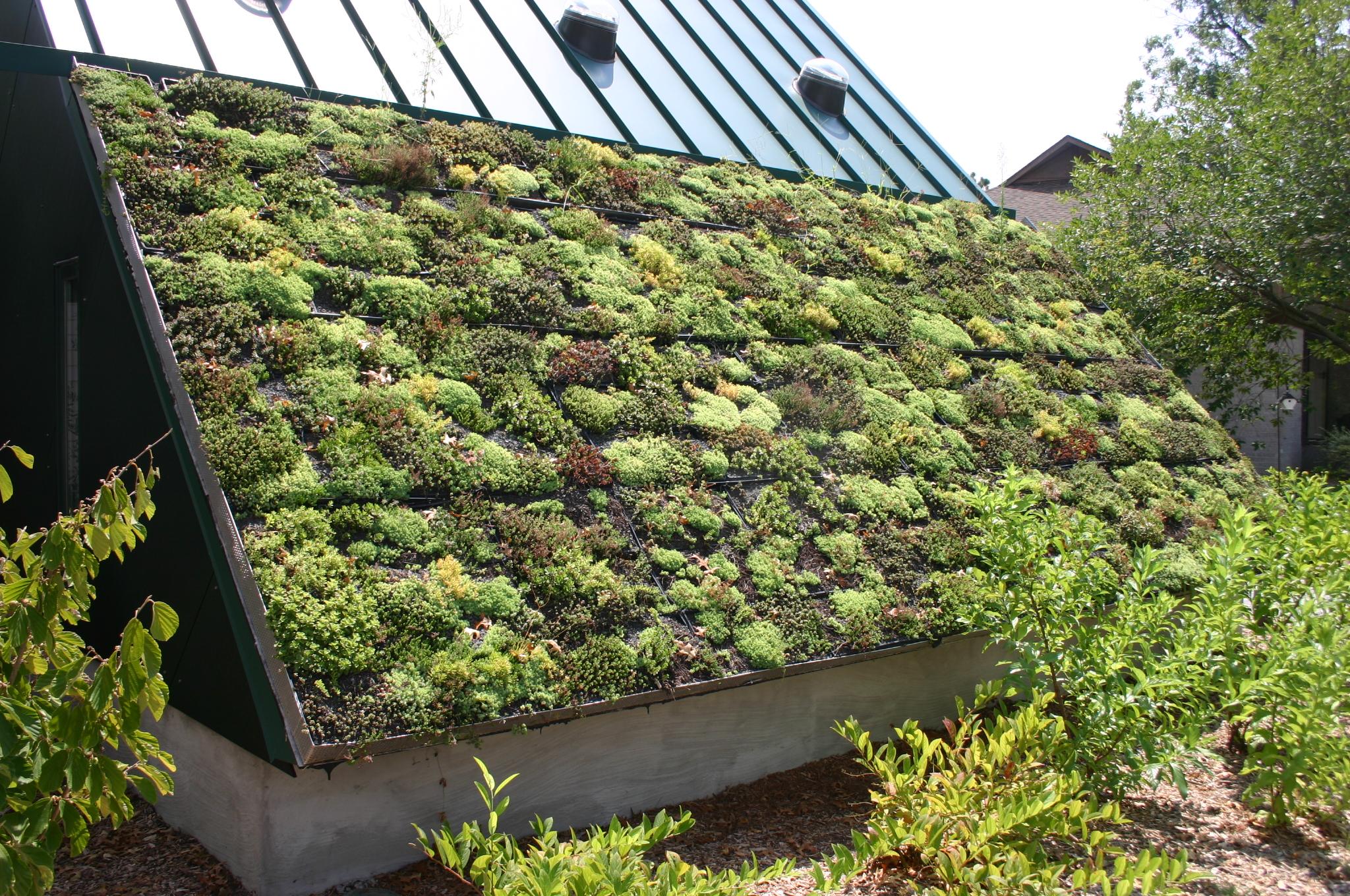 Stylowe dachy zielone